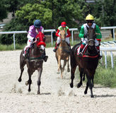 Course de chevaux. Photographie stock