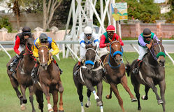 Course de chevaux Photos stock
