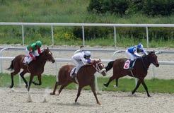 Course de chevaux. Photos stock