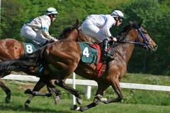Course de chevaux Photos stock