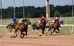 Course de chevaux Photographie stock libre de droits
