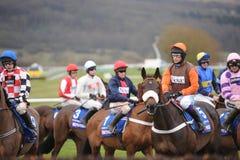 Course de chevaux Photo stock