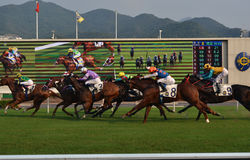 Course de chevaux 2015 Photographie stock libre de droits