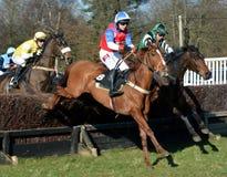 Course de chevaux au-dessus des barrières Photos stock