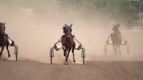Course de chevaux des chariots banque de vidéos