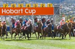 Course de chevaux Hobart Tasmania photos libres de droits