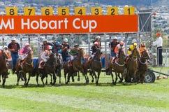 Course de chevaux Hobart Tasmania images stock