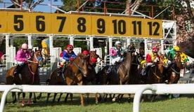 Course de chevaux - hors des portes démarrantes Photos stock