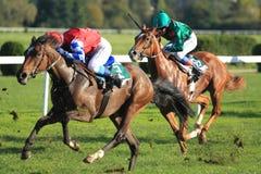 Course de chevaux - le soixante-seizième chemin commémoratif de Gersch photographie stock