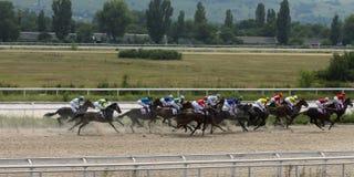 Course de chevaux pour le prix des chênes dans Pyatigorsk Images stock
