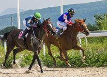 Course de chevaux pour le prix des chênes dans Pyatigorsk Photographie stock libre de droits