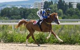 Course de chevaux pour le prix du Letni dans Pyatigorsk Photo stock