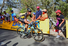 Course de cycle de Stef Clement Team Lotto Jumbo La Vuelta España photo libre de droits