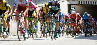 Course de vélo de l'Italie de ` des chèques postaux d Image de couleur Photos libres de droits