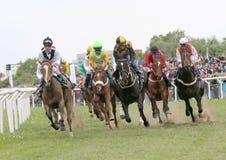 Course dure entre les chevaux de course Photographie stock