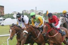Course dure entre trois chevaux de course Photographie stock libre de droits