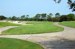 course golf Стоковая Фотография