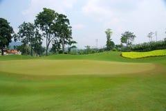 course golfa Zdjęcie Stock