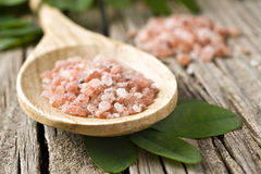 Course pink Himalayan salt on a wooden spoon Stock Photos