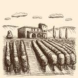 Course tir?e de vignobles italiens noire et blanche Illustration de vecteur illustration de vecteur