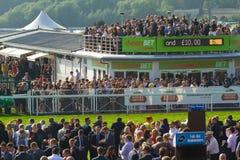 Courses de Chester Image stock