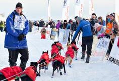 Courses de chien de traîneau de course de Baikal Images libres de droits