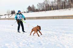 Courses de chien de traîneau de course de Baikal Photographie stock libre de droits