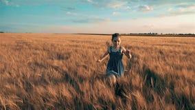 Courses de fille à travers le champ avec du blé banque de vidéos
