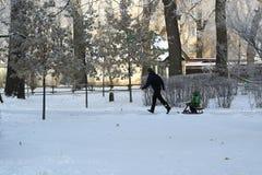Courses de papa et glissières d'amusement son fils sur un traîneau dans la forêt Russie, Saratov - Desember 2018 image stock