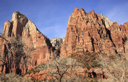 Court Patricarchs Zion Canyon National Park Utah Royalty Free Stock Photography