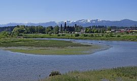 Courtenay from estuary to mountain view. View across the nature preservation project towards the Air Park, Strathcona Park Mountain Range in the background Stock Photo