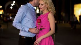 Courteous man gifting rose to his girlfriend whispering compliments in her ear. Courteous men gifting rose to his girlfriend whispering compliments in her ear stock images
