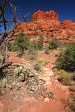 Courthouse Butte Loop near Sedona Royalty Free Stock Image