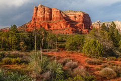 Courthouse Butte Sedona Arizona. A scenic view of the red rock landscape of courthouse butte near sedona arizona Stock Photography