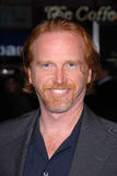 Courtney Gains Royalty Free Stock Image