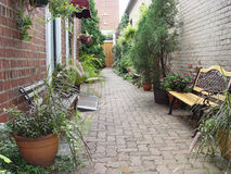 Courtyard. Landscaped alley behind to buildings Stock Photography