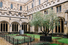Courtyard in Christ Church College Stock Photos