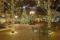 Courtyard Decorated Holiday Tree Virginia Stock Photos