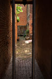 Courtyard on Elfreth's Alley. This is a view into a private courtyard located on Elfreth's Alley, in the old city area of Philadelphia, Pennsylvania, USA. The royalty free stock photo