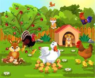 Courtyard with farm animals and their babies. Courtyard with farm animals like ducks, hens, rooster, rabbit, turkey, dog, cat and their babies Royalty Free Stock Images
