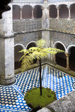 Courtyard with fern. An enclosed courtyard in Pena castle Portugal with a solitary fern Stock Photo