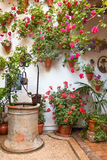 Courtyard with Flowers decorated and Old Well Stock Photography
