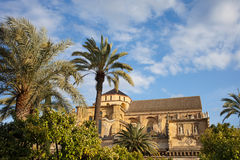 Courtyard Garden and Mezquita Cathedral of Cordoba Royalty Free Stock Photo