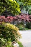 Courtyard garden Royalty Free Stock Photo