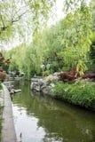 Courtyard garden Stock Photography