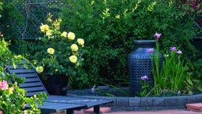Courtyard garden setting. Beautiful springtime Mediterranean style courtyard garden with outdoor setting Stock Photography