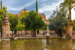 Courtyard of Great Mosque Mezquita, Cordoba, Spain stock images