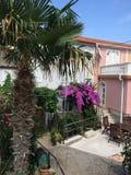 Courtyard of mediterranean home. Mediterranean courtyard at Adriatic sea at island Krk Stock Image