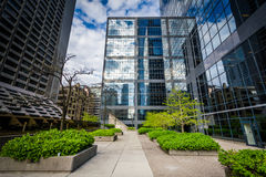 Courtyard and modern buildings in downtown Toronto, Ontario. Royalty Free Stock Photos