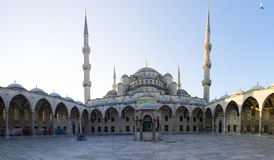Courtyard of Sultan Ahmed Mosque Stock Image